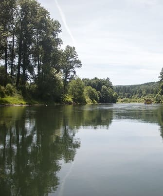 The Cowlitz River